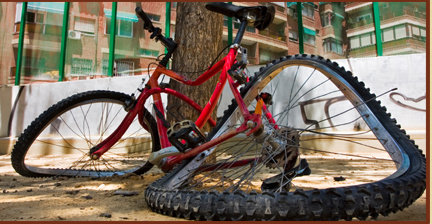 damaged bicycle with propped against tree after accident