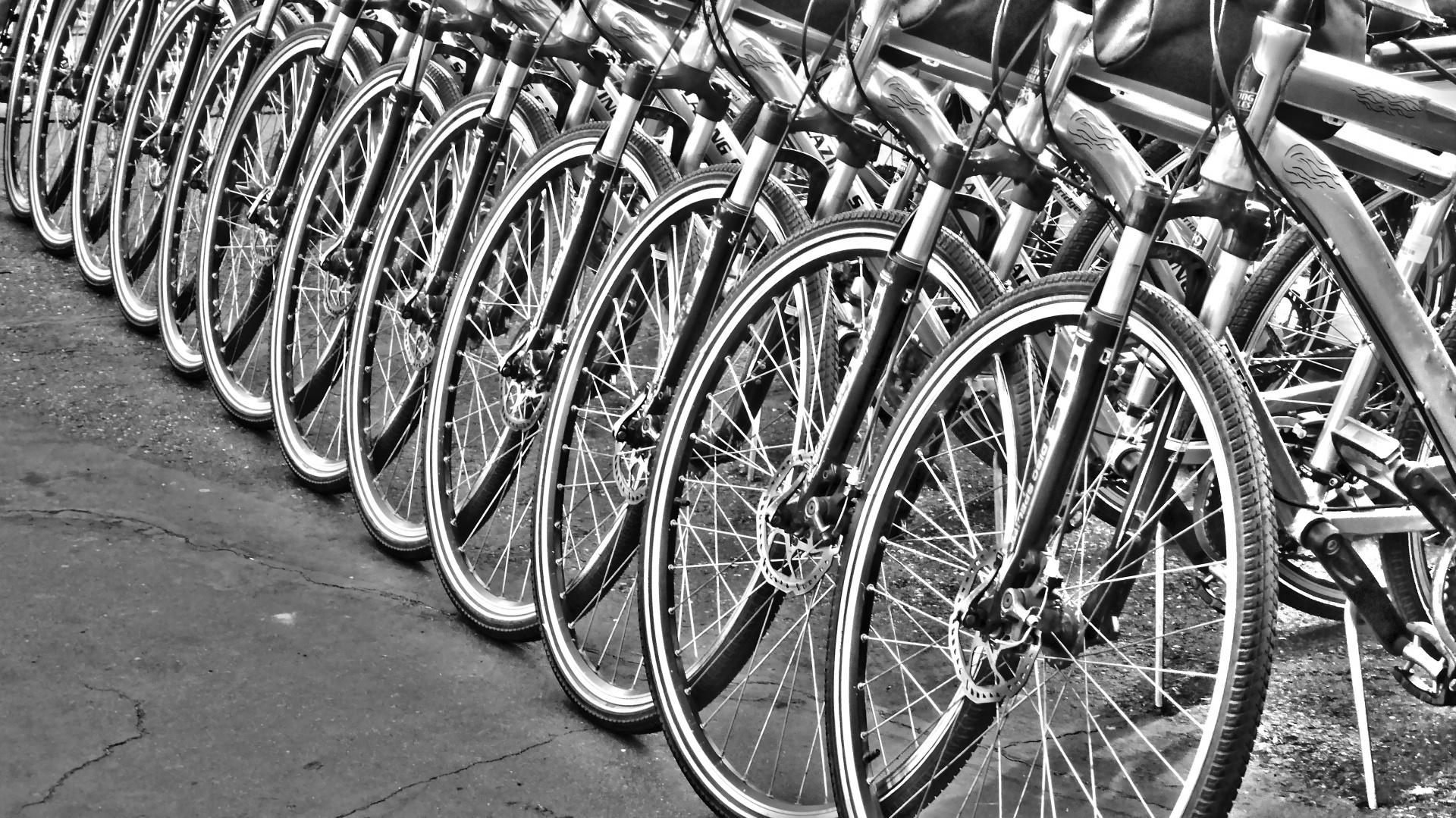 black and white photo of row of bicycles